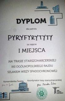 ORSWS dyplom15
